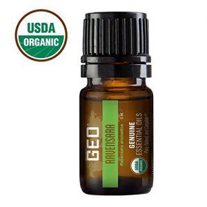 Ravensara Essential Oil